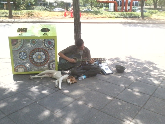 Street musician and his loyal friend