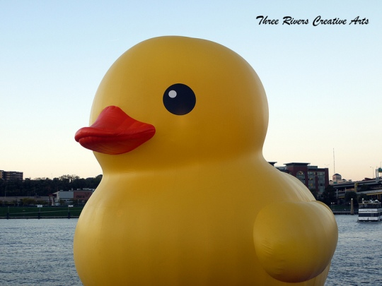 Rubber ducky says hello to Pittsburgh1