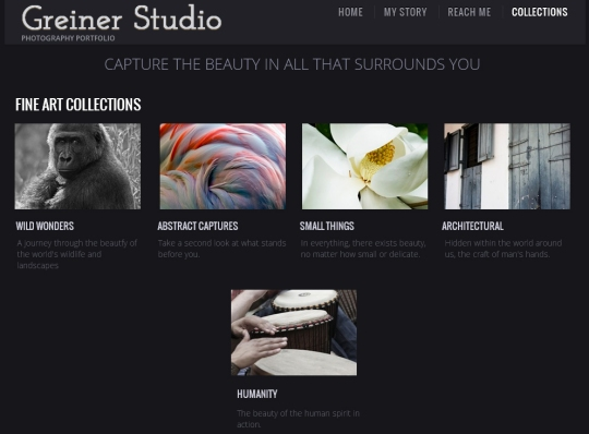 greiner studio screen shot