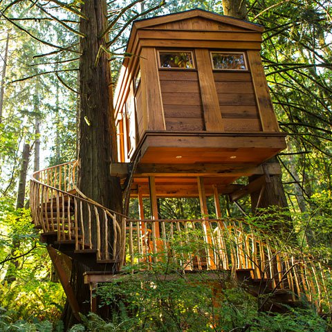 Tree-Houses-ArchitectureArtDesigns-2